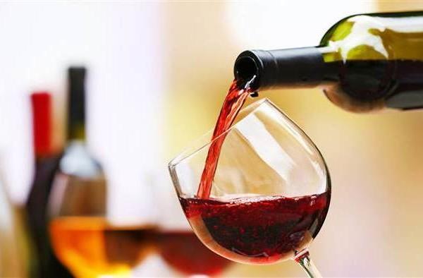Grand Experience – Degustação de Vinhos